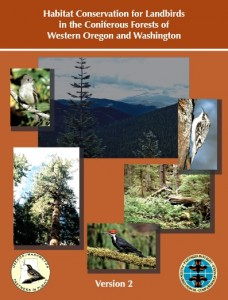 coniferous forests western or wa