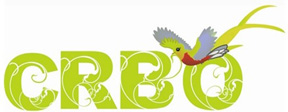 CRBO logo (72ppi 4x)