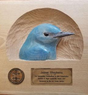 Jaime Stephens PIF Leadership 2017 Award (72ppi 4x)