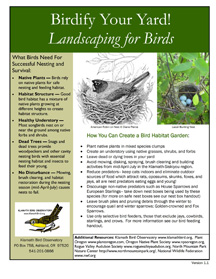 birdify your yard cover (72 ppi 3x)