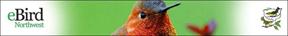 eBird NW Logo Banner RUHU (72ppi 4x)