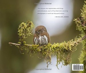 Owl by Paul Bannick back cover (c) 2016 The Mountaineers Books