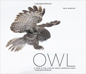 Owl by Paul Bannick front cover (c) 2016 The Mountaineers Books