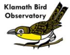 KBO Logo (96 dpi)